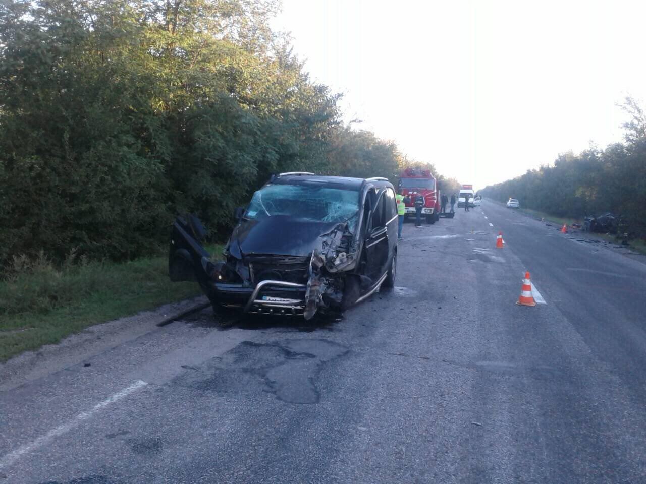 В лобовом столкновении на запорожской трассе погибли 4 человека: еще 2 – пострадали, – ФОТО, фото-2
