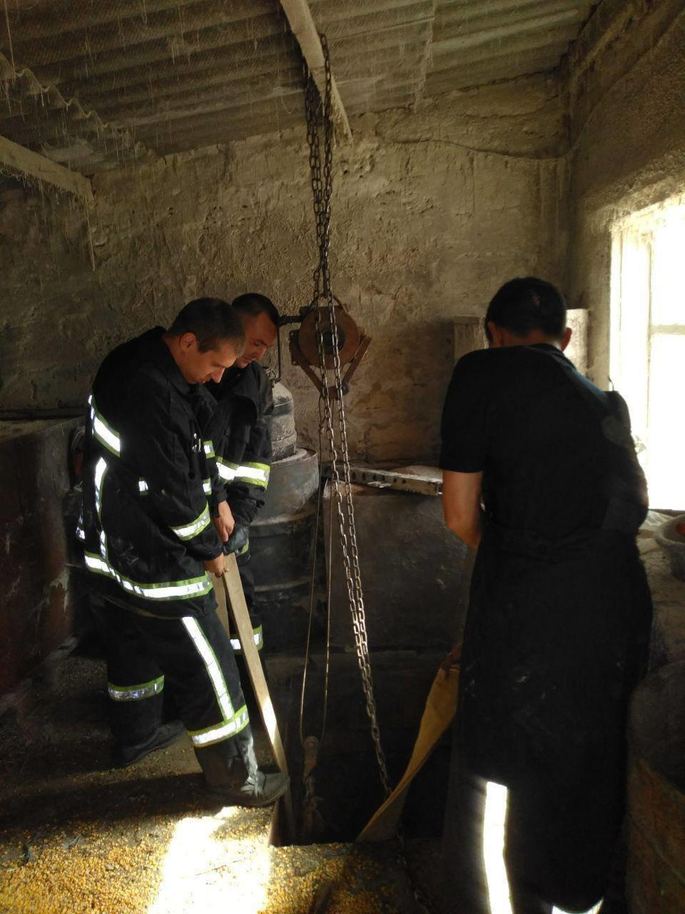 Под Запорожьем спасатели доставали из подвала корову: понадобился кран, - ФОТО, фото-1
