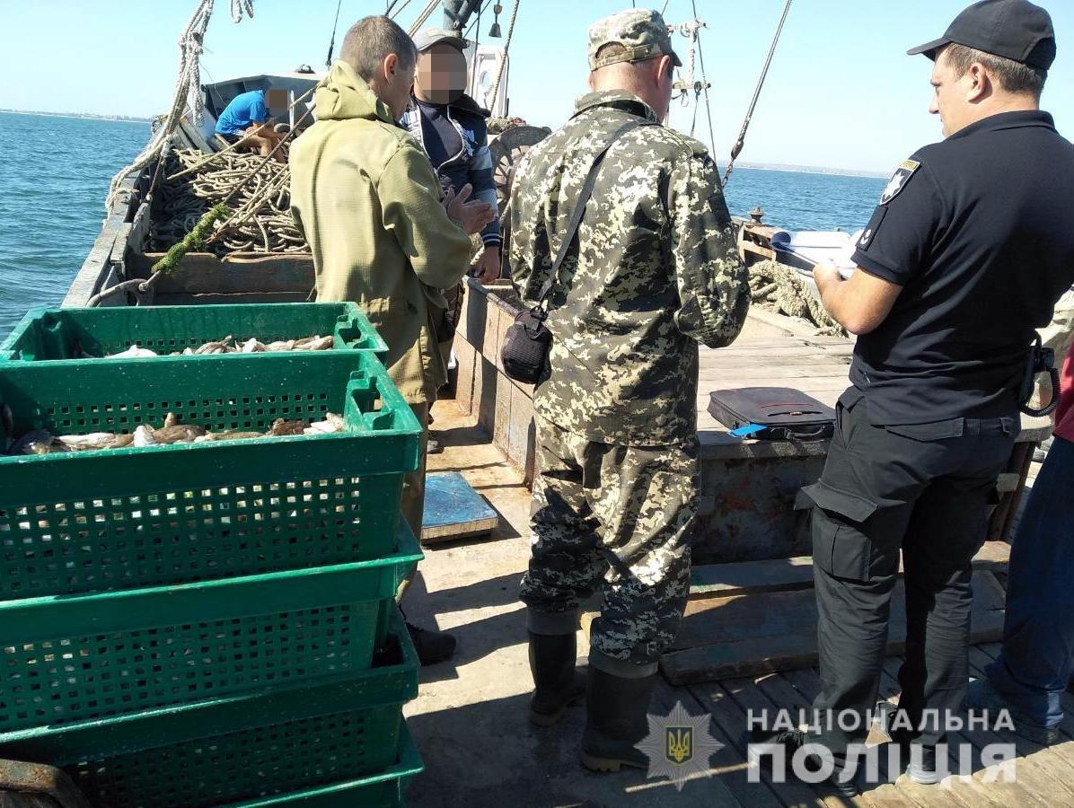 В Запорожской области браконьеры незаконно выловили более 200 кг рыбы-молодняка, – ФОТО, фото-3