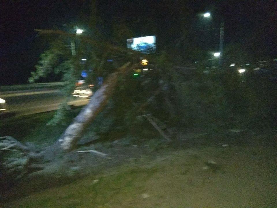 В Запорожье на Набережной произошло смертельное ДТП, – ФОТО, фото-6