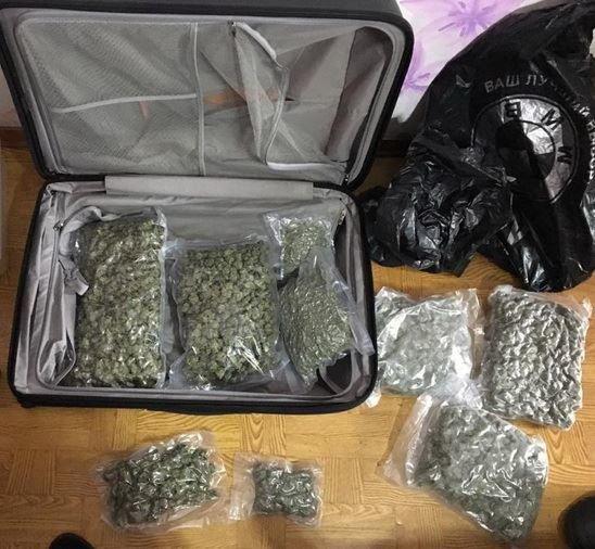 В Запорожье изъяли марихуаны на 3 миллиона, - ФОТО, фото-1