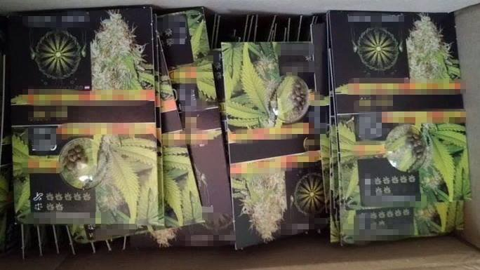 В Запорожье изъяли марихуаны на 3 миллиона, - ФОТО, фото-3
