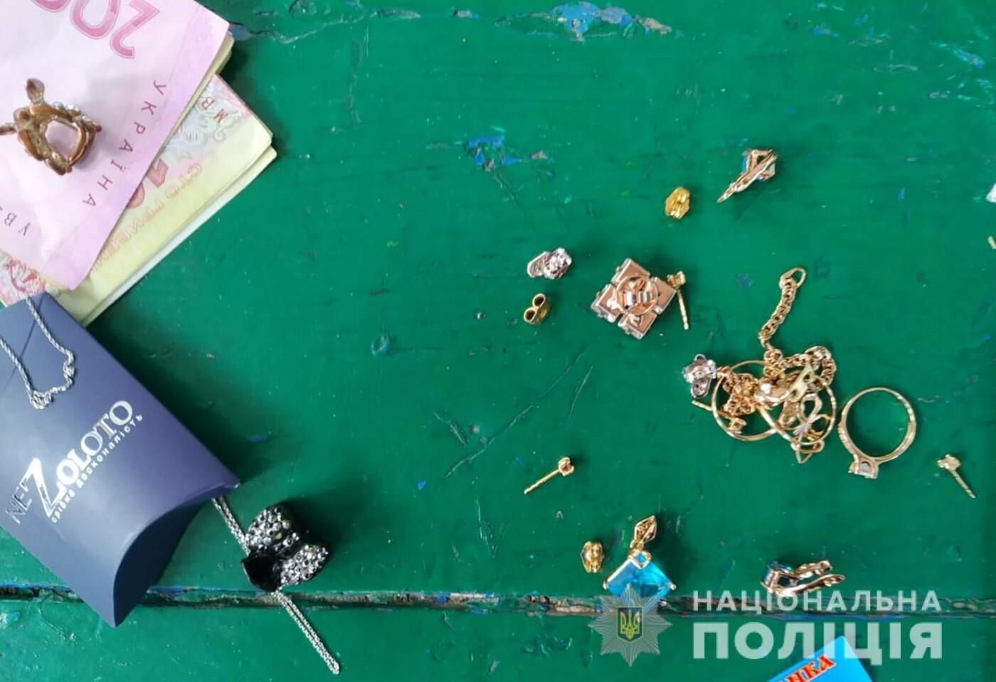 В Мелитополе задержали квартирных воров с похищенными вещами, - ФОТО, фото-4