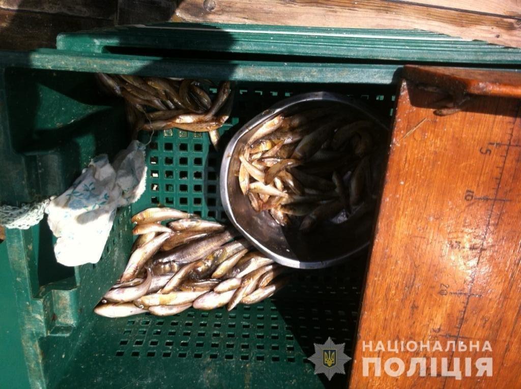 В Запорожской области задержали браконьеров в водах природно-заповедного парка, – ФОТО, фото-3