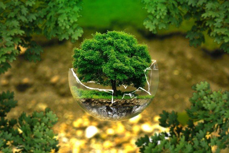 ТОП-20 лучших эко-программ компаний, фото-1