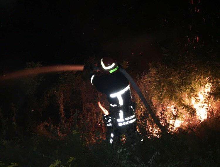 В Запорожской области на выходных произошло 116 пожаров в экосистемах, – ФОТО, фото-2