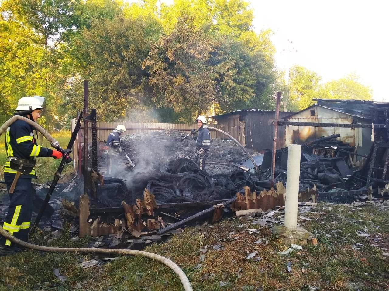 В Запорожье произошел пожар на Верхней Хортице, – ФОТО, фото-1