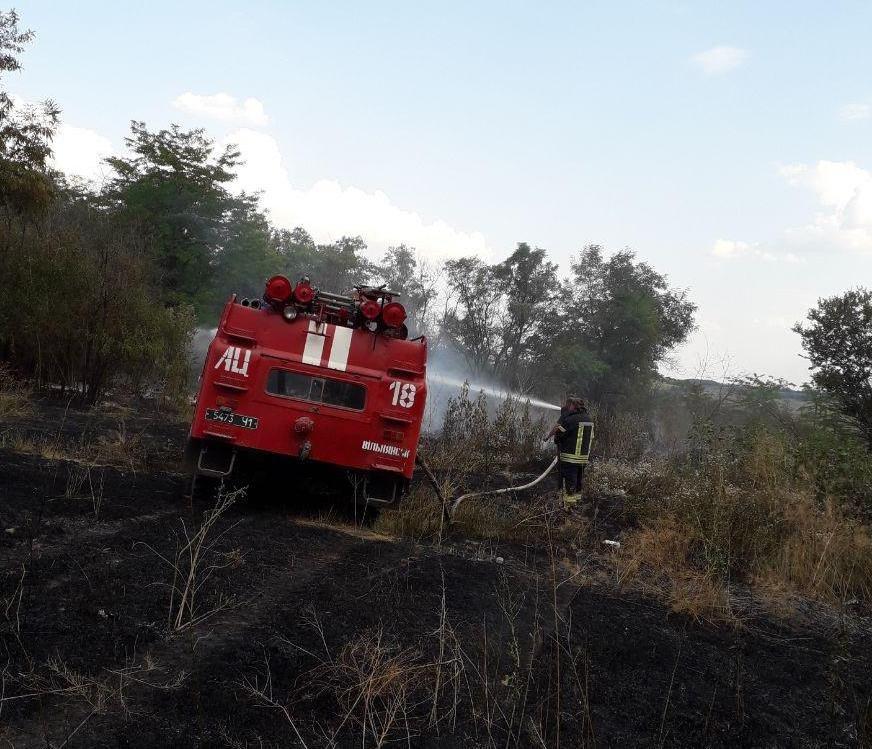Под Запорожьем горело лесничество: пожар тушили 25 человек, – ФОТО, фото-1