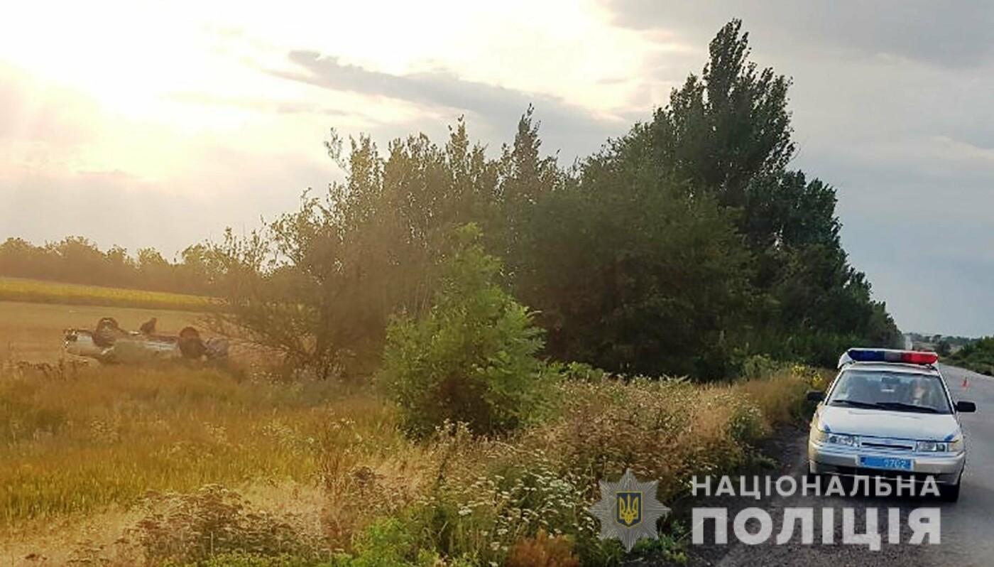 На запорожской трассе произошло смертельное ДТП: погиб водитель, пассажир – в больнице, – ФОТО, фото-2