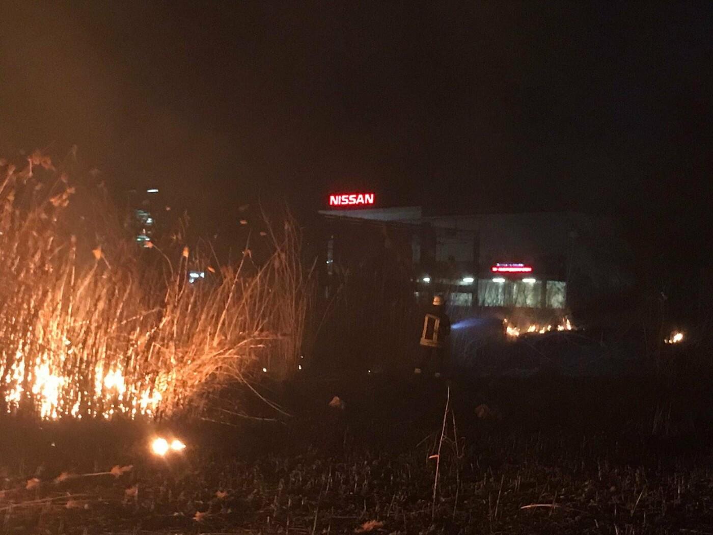 В Запорожской области за сутки пожары уничтожили экосистемы на площади в 6 футбольных полей, фото-1