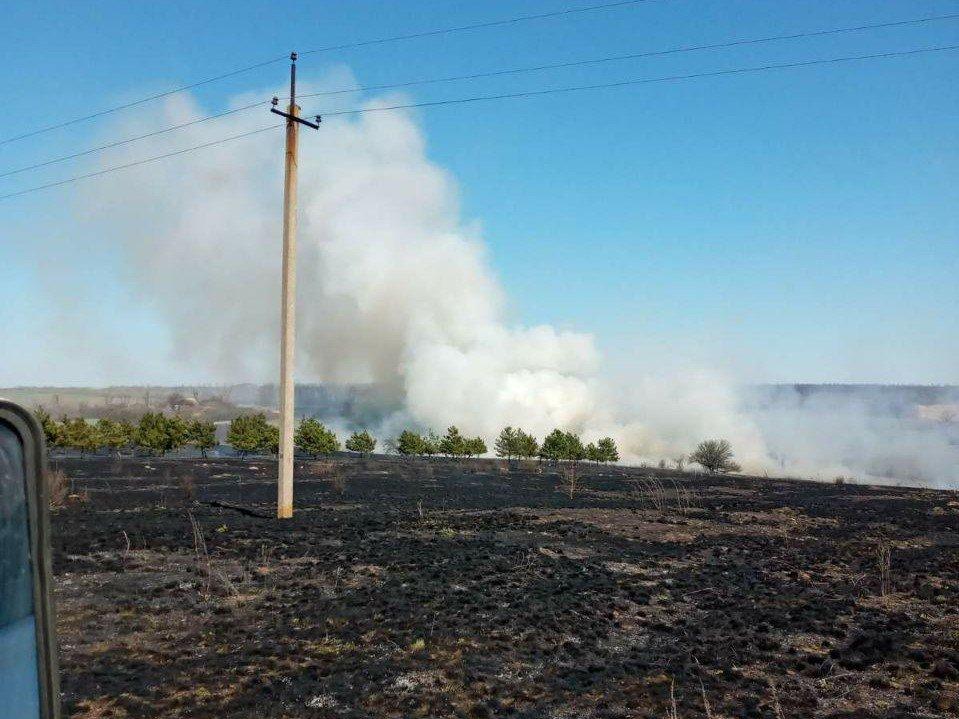 Вчера в Запорожской области пожары в экосистемах тушили 100 спасателей, - ФОТО, фото-3