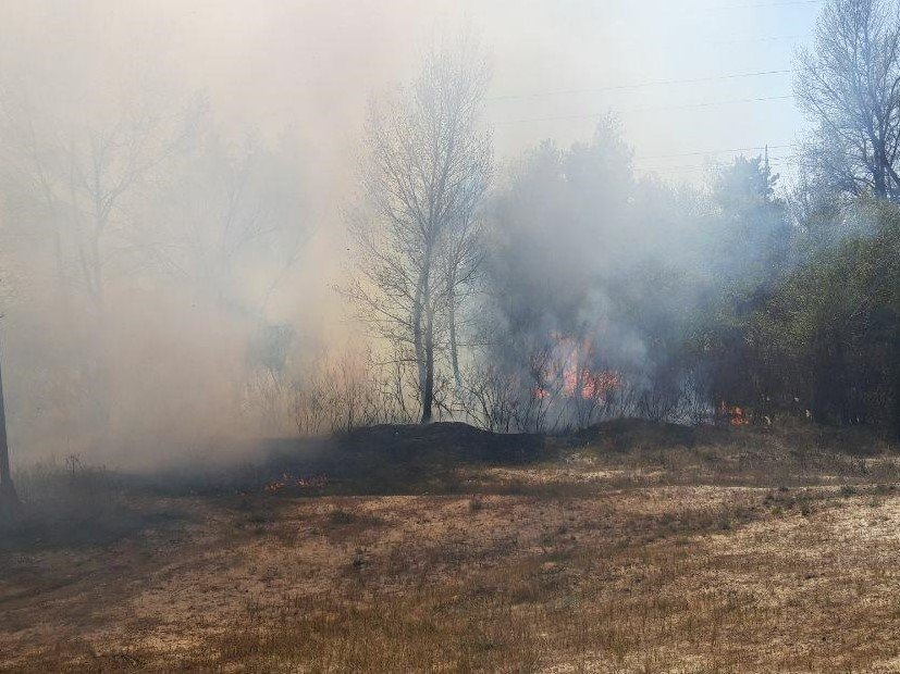 Вчера в Запорожской области пожары в экосистемах тушили 100 спасателей, - ФОТО, фото-1