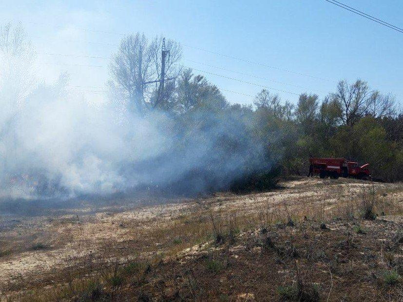 Вчера в Запорожской области пожары в экосистемах тушили 100 спасателей, - ФОТО, фото-2