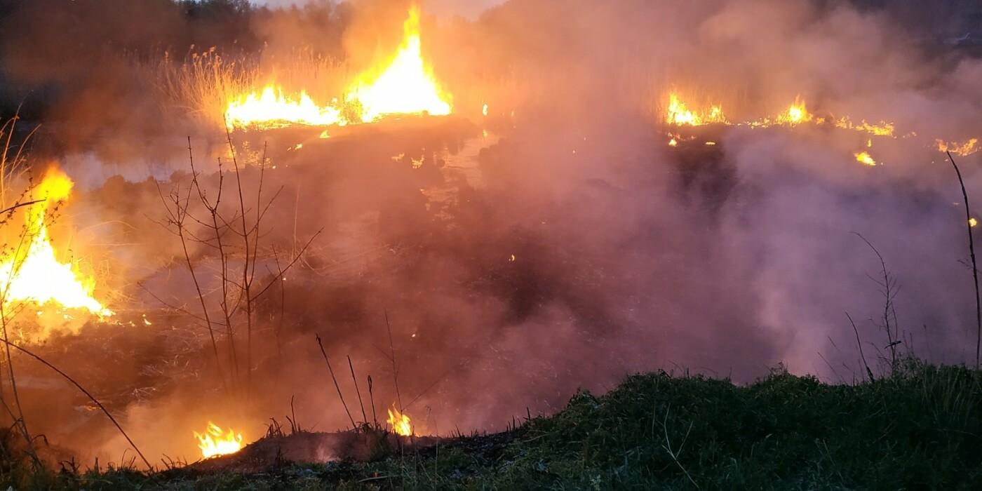 Вчера запорожские спасатели 9 раз выезжали тушить пожары в экосистемах, - ФОТО, фото-1