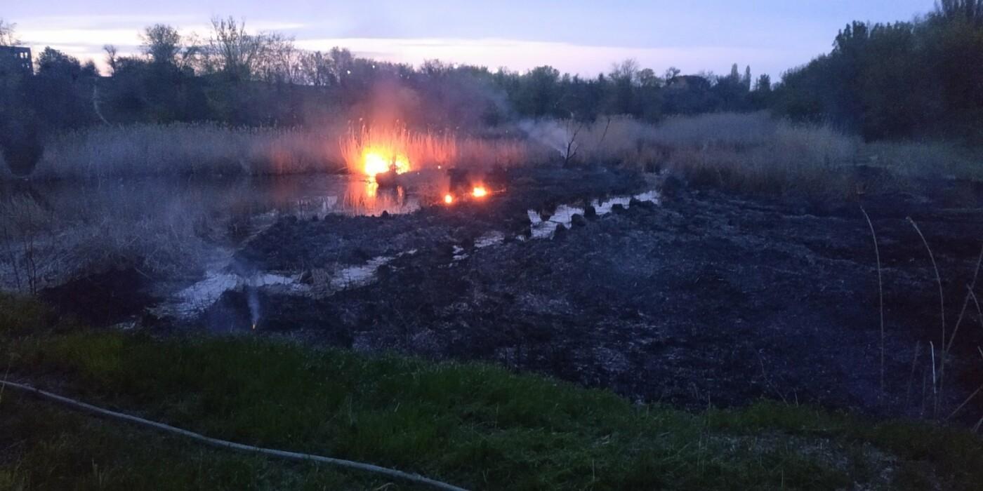 Вчера запорожские спасатели 9 раз выезжали тушить пожары в экосистемах, - ФОТО, фото-2