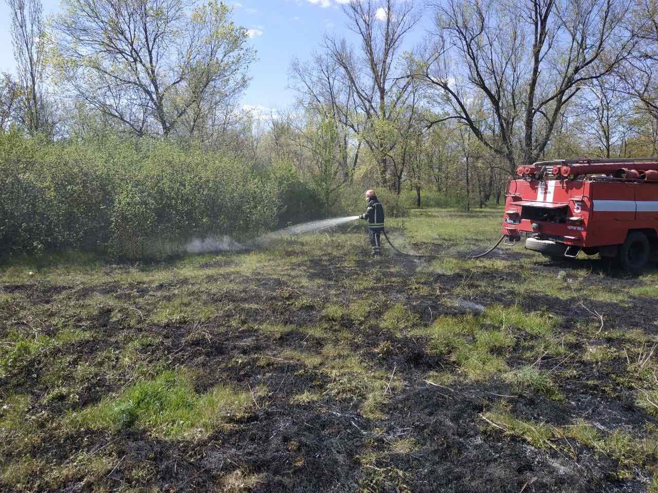 Запорожские пожарные за сутки потушили 10 пожаров в экосистемах: из них один лесной, фото-1