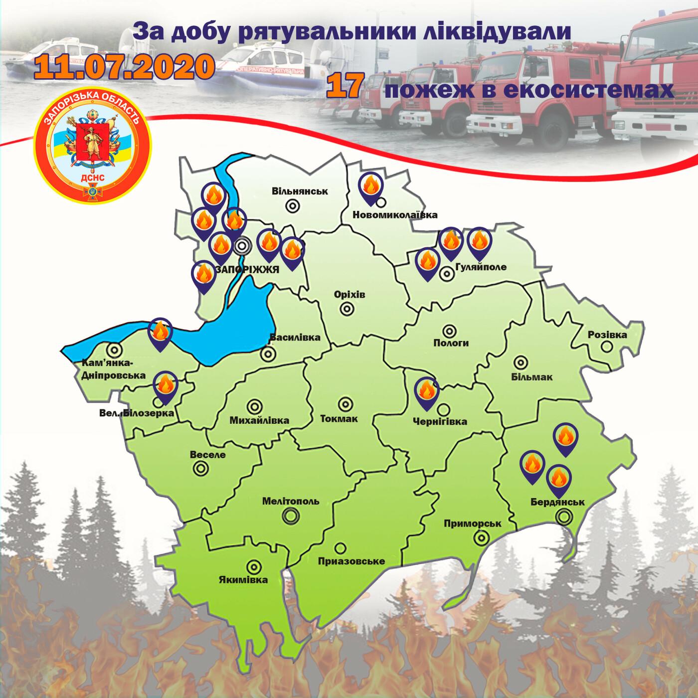 За сутки в Запорожской области спасатели потушили 17 пожаров в экосистемах, фото-1