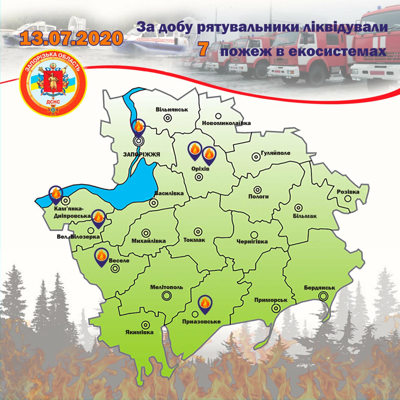 За сутки в Запорожской области случилось 16 пожаров в экосистемах: один в лесу, - ФОТО, фото-4