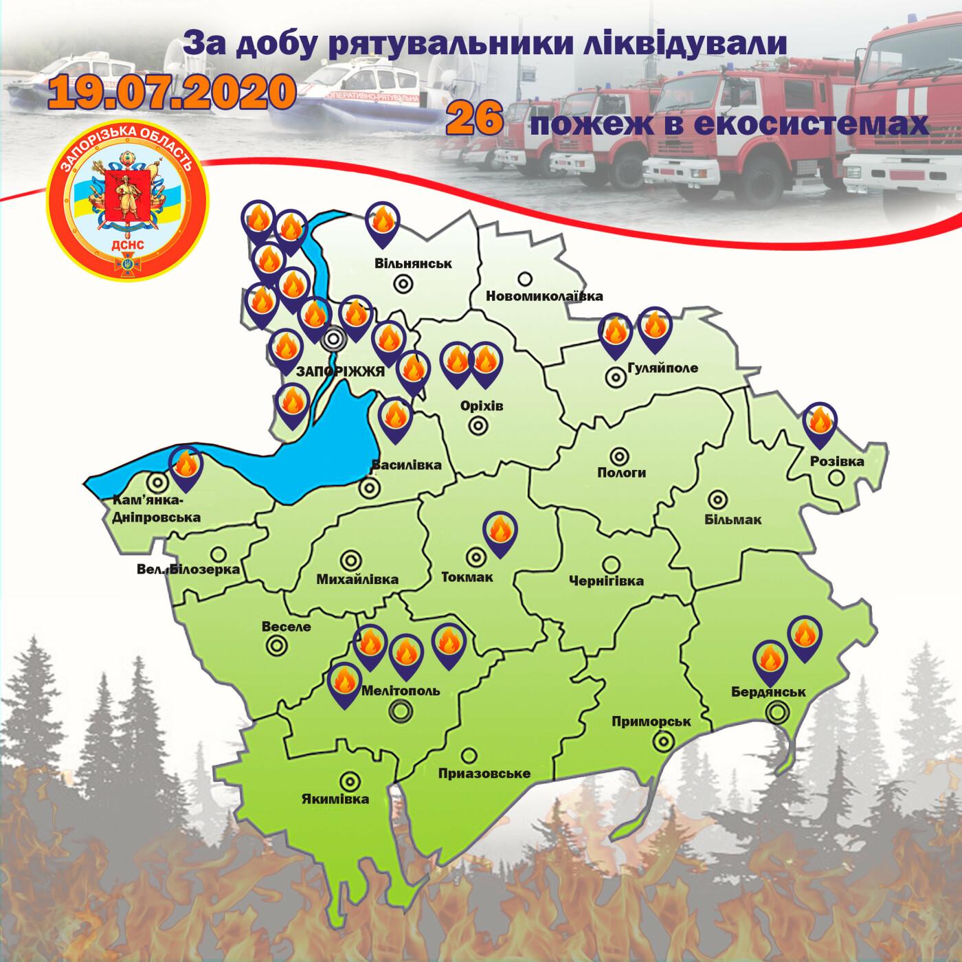 В Запорожской области за сутки случилось 26 пожаров в экосистемах - один из них лесной, фото-1