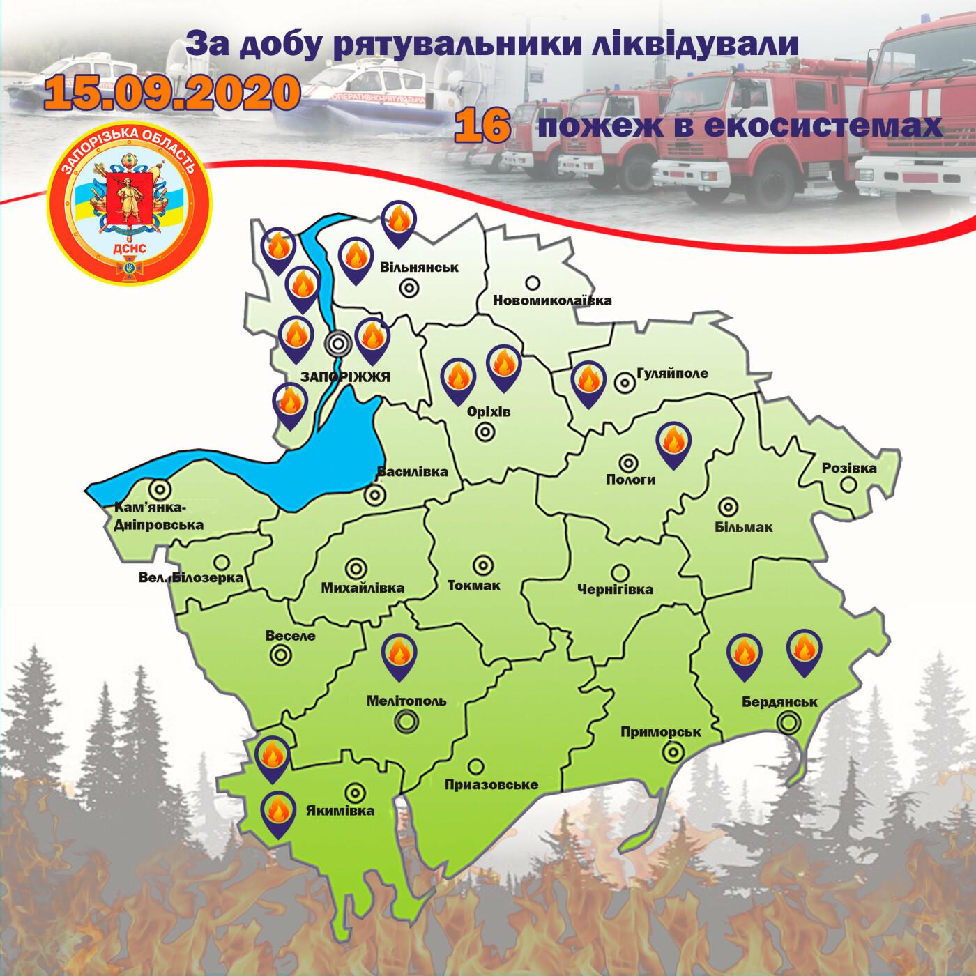 За сутки пожары уничтожили экосистемы Запорожской области на площади в 6 футбольных полей, фото-1