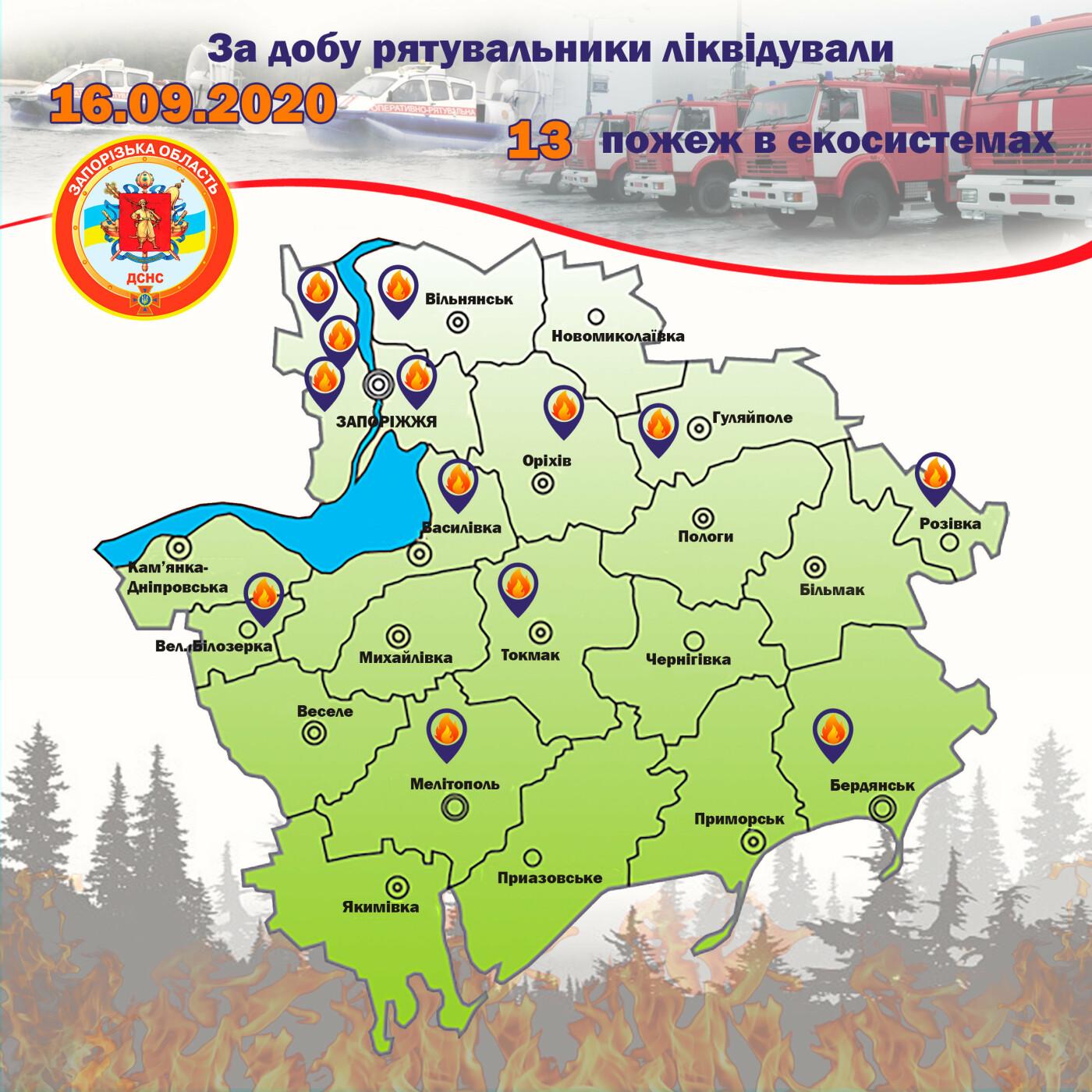 За сутки пожары уничтожили экосистемы Запорожской области  на площади в 4 футбольных поля, фото-1
