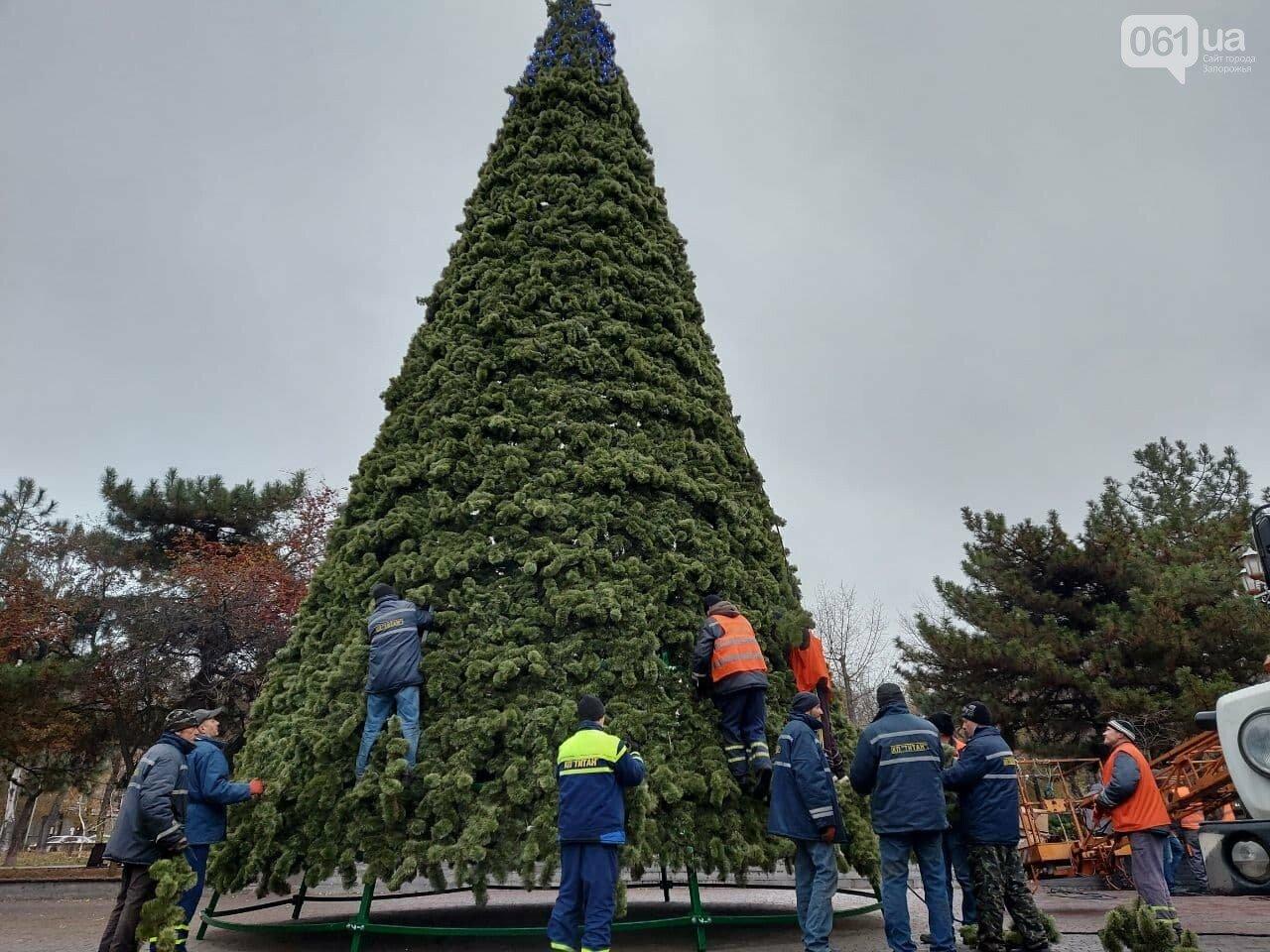 Главные новости 1 декабря в Запорожье и области в один клик, фото-2