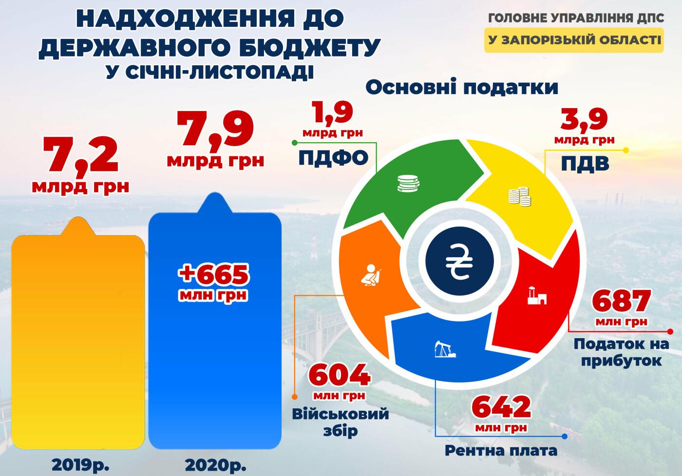Запорожский бизнес направил в госбюджет восемь миллиардов, - ИНФОГРАФИКА, фото-1