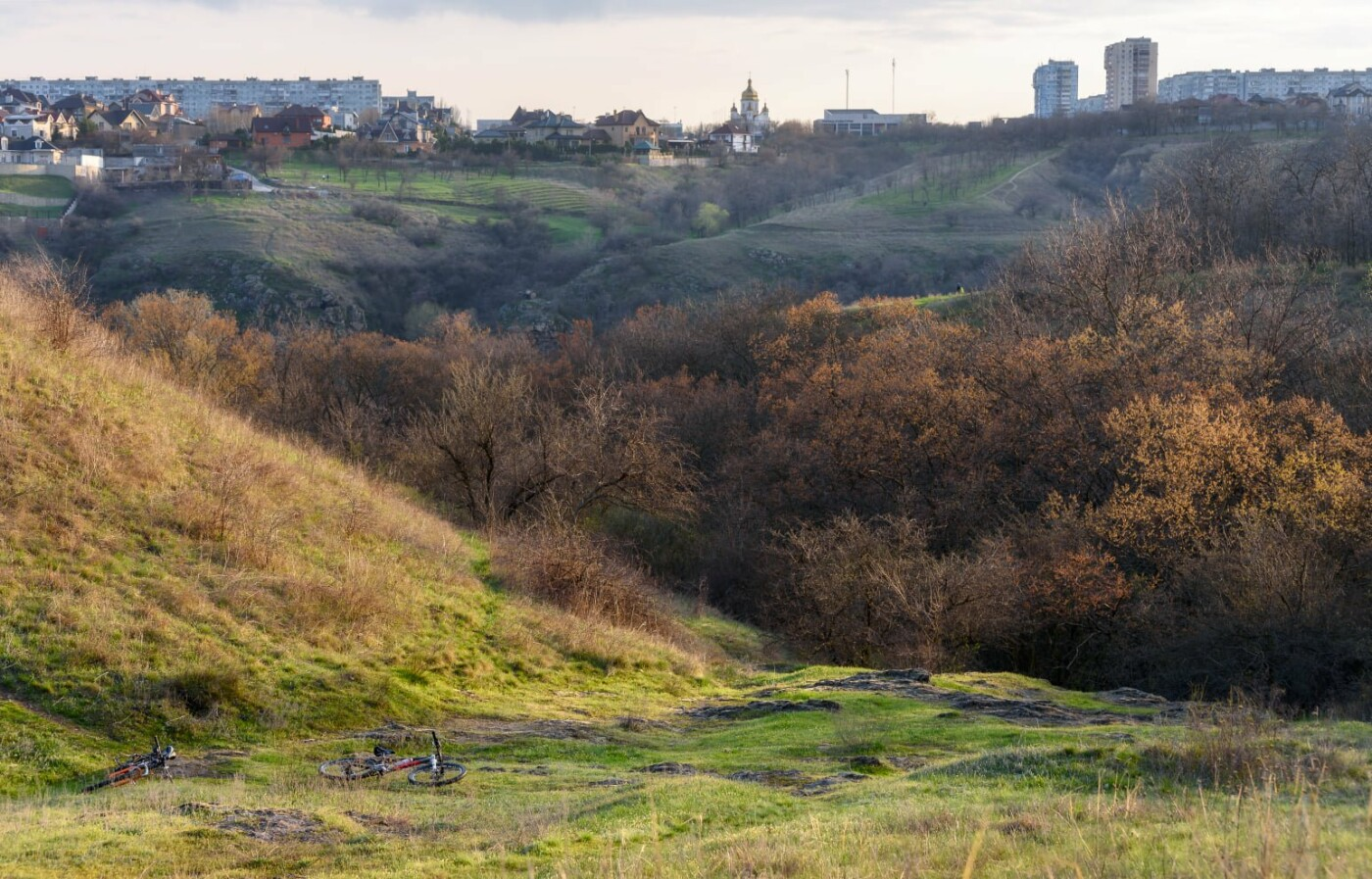На закате и после грозы: запорожские фотографы делятся снимками цветущей Хортицы, - ФОТО, фото-14