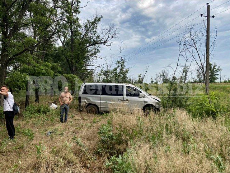 izobrazhenieviber2021 06 2510 25 07 1 60d5b01494e3f - В Запорожской области слетел в кювет и перевернулся микроавтобус: в ДТП пострадала 38-летняя женщина
